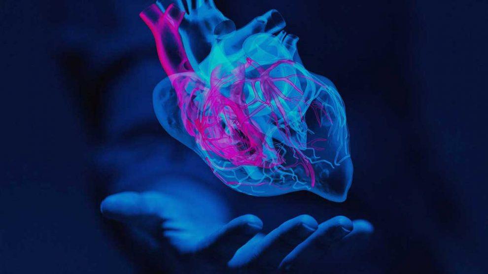 la-inteligencia-del-corazon